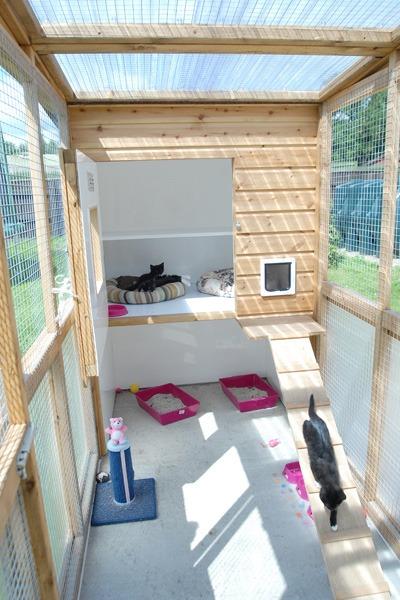 Cat enclosure - image 3