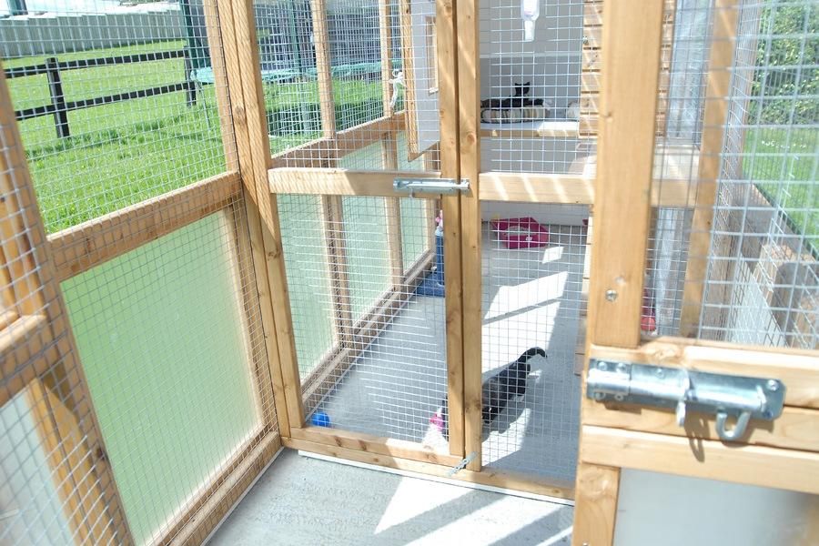 Cat enclosure - image 4